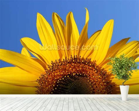 Sunflower Sunrise Wallpaper Wall Mural  Wallsauce Uk
