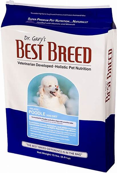 Poodle Dog Diet Breed Dr 30lbs Gary