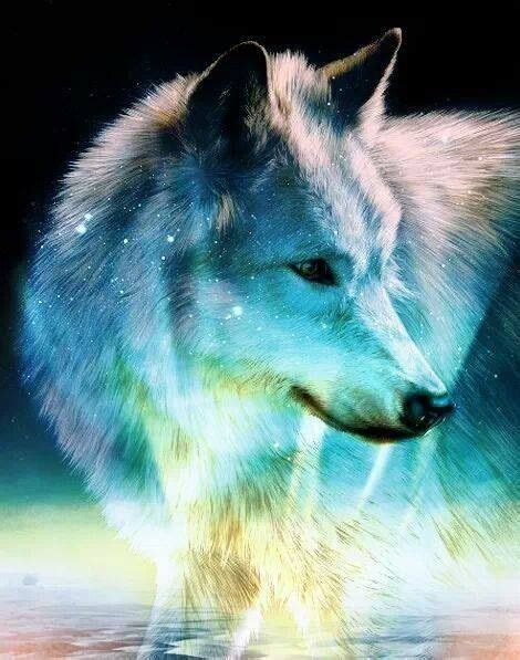 galaxy wolf wolves  indians eagles art earth spirit