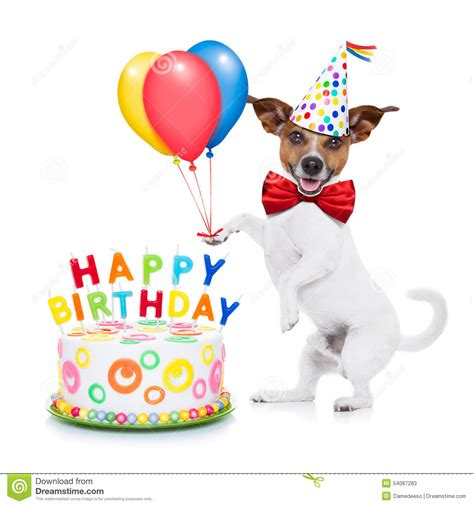 Dog Happy Birthday Balloons