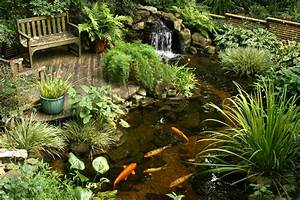 ponds and pondless water features for sale the pond doctor With superb idee deco jardin terrasse 5 comment amenager une mare naturelle
