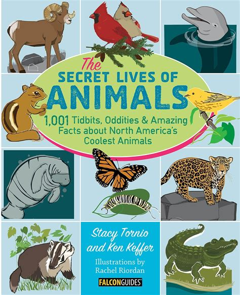 Books Babies And Bows The Secret Lives Of Animals Blog Tour