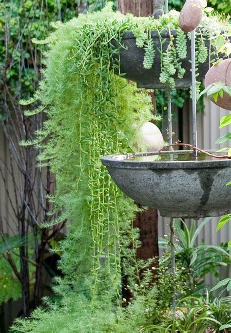 natural mosquito repellent ideas   outdoor space