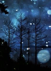 Beautiful Winter Scenes at Night