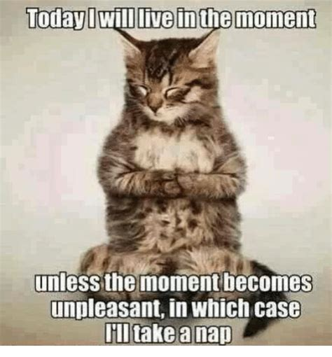 Will Meme - today i will live inthe moment unless the moment becomes unpleasant in which case take a nap