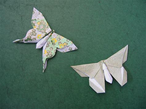 mudarri luna moth   butterfly  sok song michael