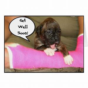 Get well soon boxer puppy greeting card | Zazzle
