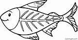 Coloring Fish Ray Colorir Coloringall Mais sketch template