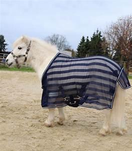 Chemise Anti Mouche Cheval : chemise anti mouches de shetland cheval waldhausen ~ Melissatoandfro.com Idées de Décoration