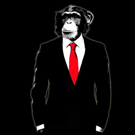 designed by humans domesticated monkey by design by humans on deviantart