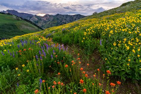 10 Best Landscape And Scenic Photos Of 2015  Clint Losee