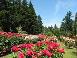 find a park the city of portland oregon