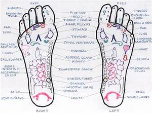 2019 Download All Best Foot Reflexology Charts