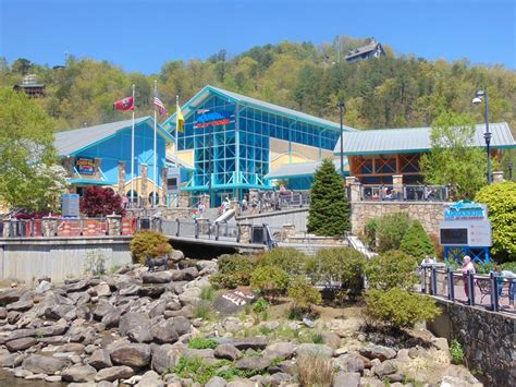 river terrace gatlinburg exclusive travel save in gatlinburg westgate river