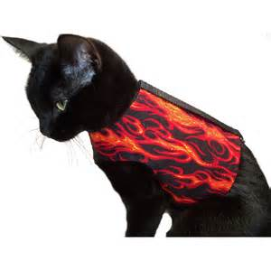 cat harness flames cats harness nipandbones