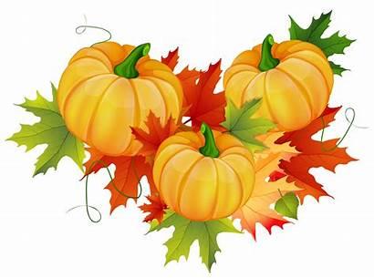 Thanksgiving Pumpkin Clipart Decoration Transparent Yopriceville