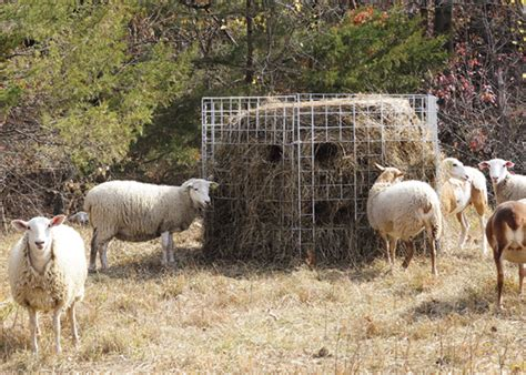 cheap wire fencing installing premier big bale feeders