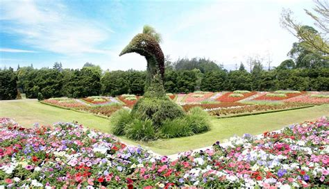 rute  lokasi taman bunga nusantara tempat wisata