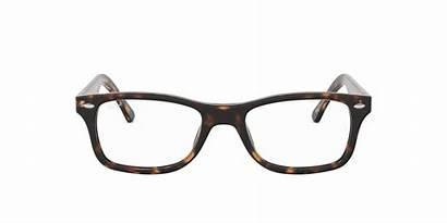 Ban Ray Havana Glasses Rx5228 Dark Rx
