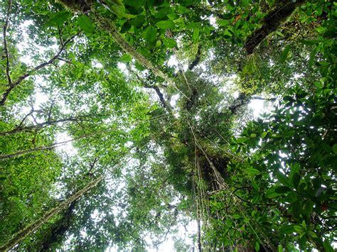 Apskates vietas Kostarikā: tropiskie lietusmeži un vulkāni