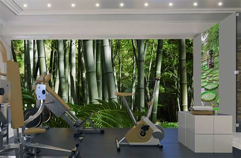 d 233 co murale salle de sport zen room and sous sol