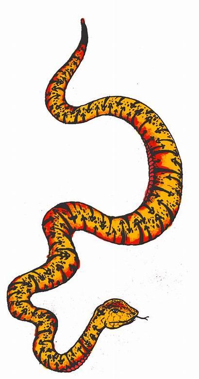 Clipart Snake Colourful Transparent Webstockreview Boy