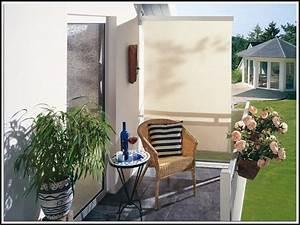 Pflanzen Sichtschutz Balkon : sichtschutz balkon seitlich pflanzen balkon house und dekor galerie bdamdxpg93 ~ Eleganceandgraceweddings.com Haus und Dekorationen