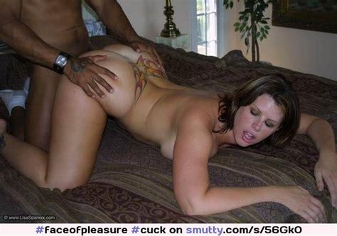 an image by masai76a fantasti cc cuck cuckold doggie wife ass ass up tatoo slutwife bbc faces