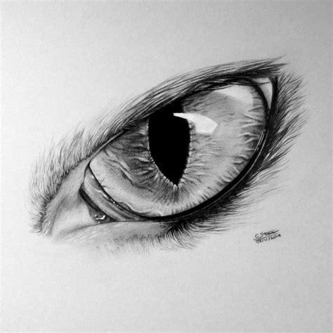 wolf drawings ideas  pinterest