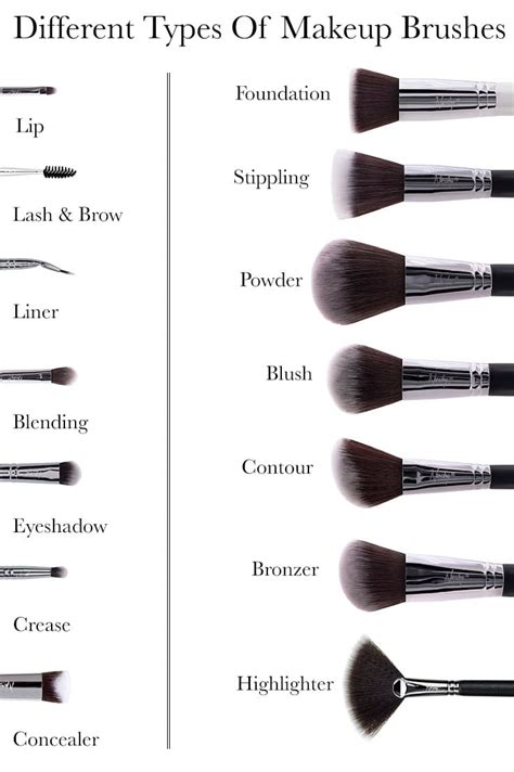 Different Types Of by 14 Different Types Of Makeup Brushes And Their Uses