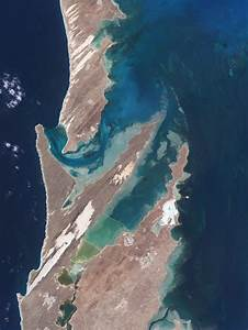 Shark Bay  Australia