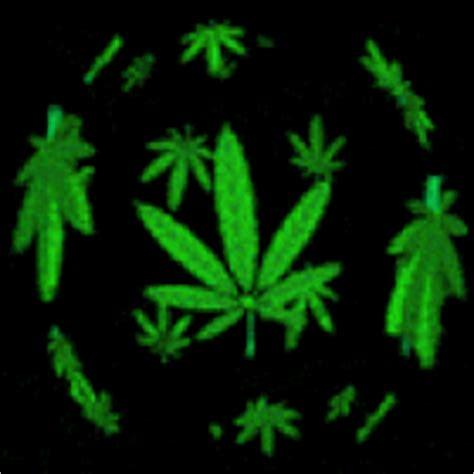 Marijuana Animated Wallpaper - animated transparent pictures images photos