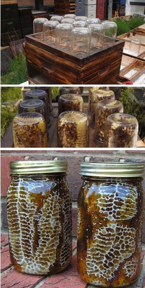 Backyard Honey Bee Hive by 10 Awesome Diy Backyard Beehive Plans And Ideas Home And