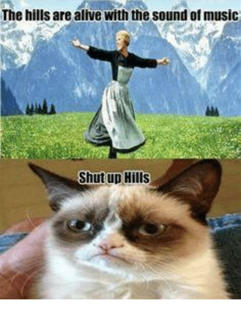 Sound Of Music Meme - the hills are alive with the sound of music shut up hills meme on sizzle