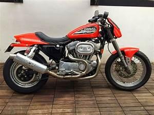Racing Caf U00e8  Harley Sportster 883r By Carlo Talamo