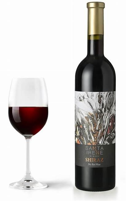Shiraz Dry Irene Santa Wine Glass Winery
