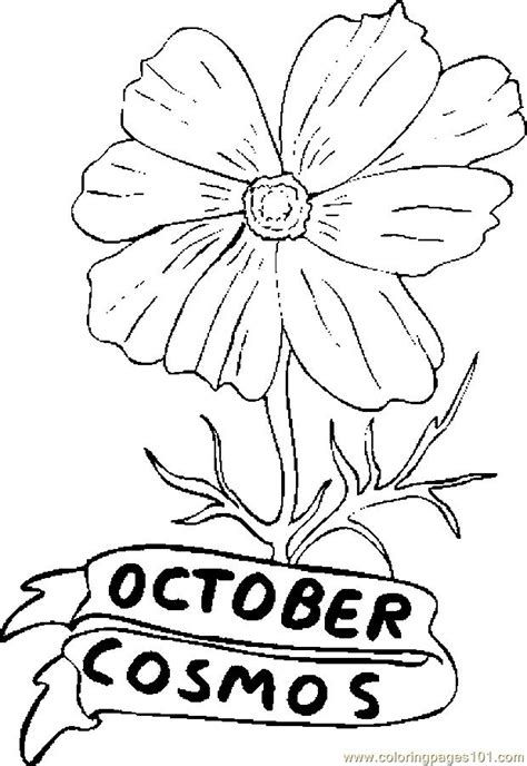 october cosmos coloring page  flowers coloring