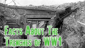 Trench Warfare Facts