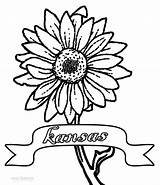 Sunflower Coloring Pages Printable Cool2bkids sketch template