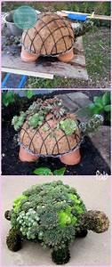 Pflanzen Bewässern Mit Plastikflasche : diy succulent turtle tutorial video schildkr ten g rten und pflanzen ~ Markanthonyermac.com Haus und Dekorationen