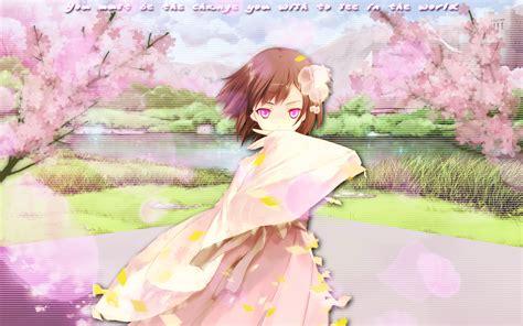 Anime Cherry Blossom Wallpaper - anime cherry blossom wallpaper wallpapersafari