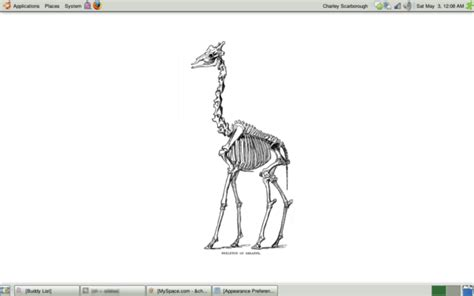 Giraffe Skeleton By Limejello On Deviantart