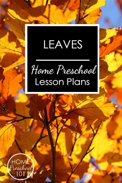 leaves home preschool lesson plans for leaf theme or fall 322 | 3d3446b5e912944f5edf71e02cb7b698