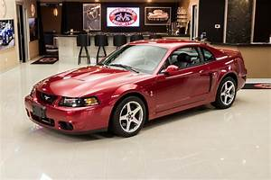 2003 Ford Mustang SVT Cobra for sale #99077 | MCG