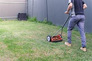 10 Best Manual Lawn Mowers 2020