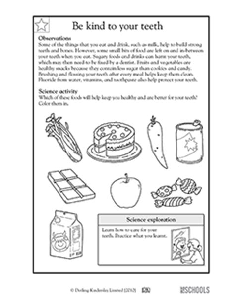 1st grade 2nd grade kindergarten science worksheets be