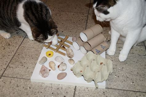 katzenspielzeug basteln ideen katzenspielzeug ideen und kaufberatung