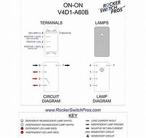 Carling Switch Wiring Diagram