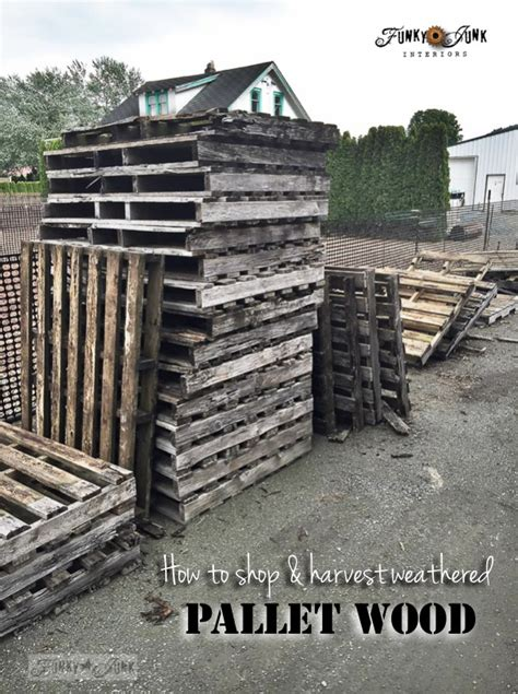 all you wanted to about pallet woodfunky junk interiors