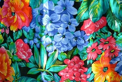 Hawaiian Flowers Flower Wallpapers Tropical Hawaii Floral